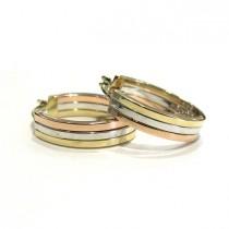 Tricolor Hoop Earrings 28957